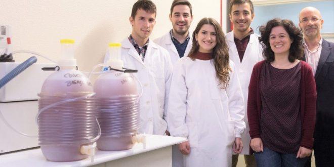 Ecotrophelia Portugal, Media, Clipping, Sidra eco-inovadora produzida por estudantes da UA já tem empresas interessadas