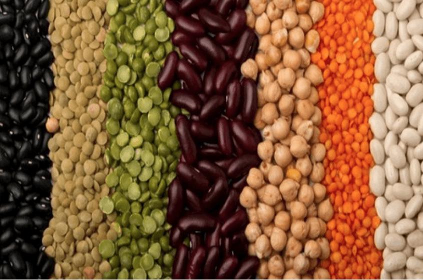 Ecotrophelia Portugal, Media, Clipping, Estudantes da UC reinventam o consumo de leguminosas